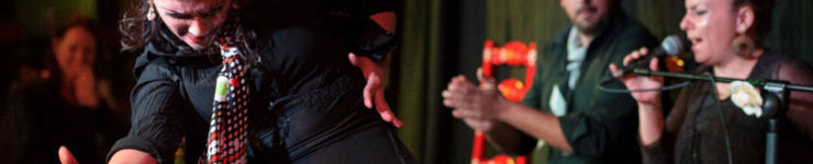 espectaculos flamenco granada